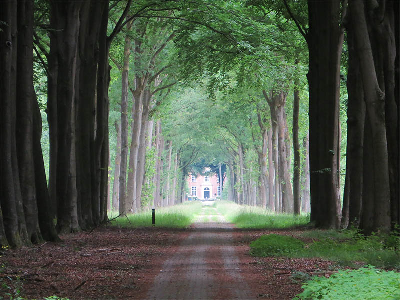 wandelen tijdens de stilte-retraite